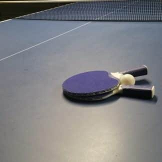 Raquettes de Tennis de Table