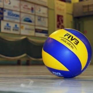 Ballons Volley ball